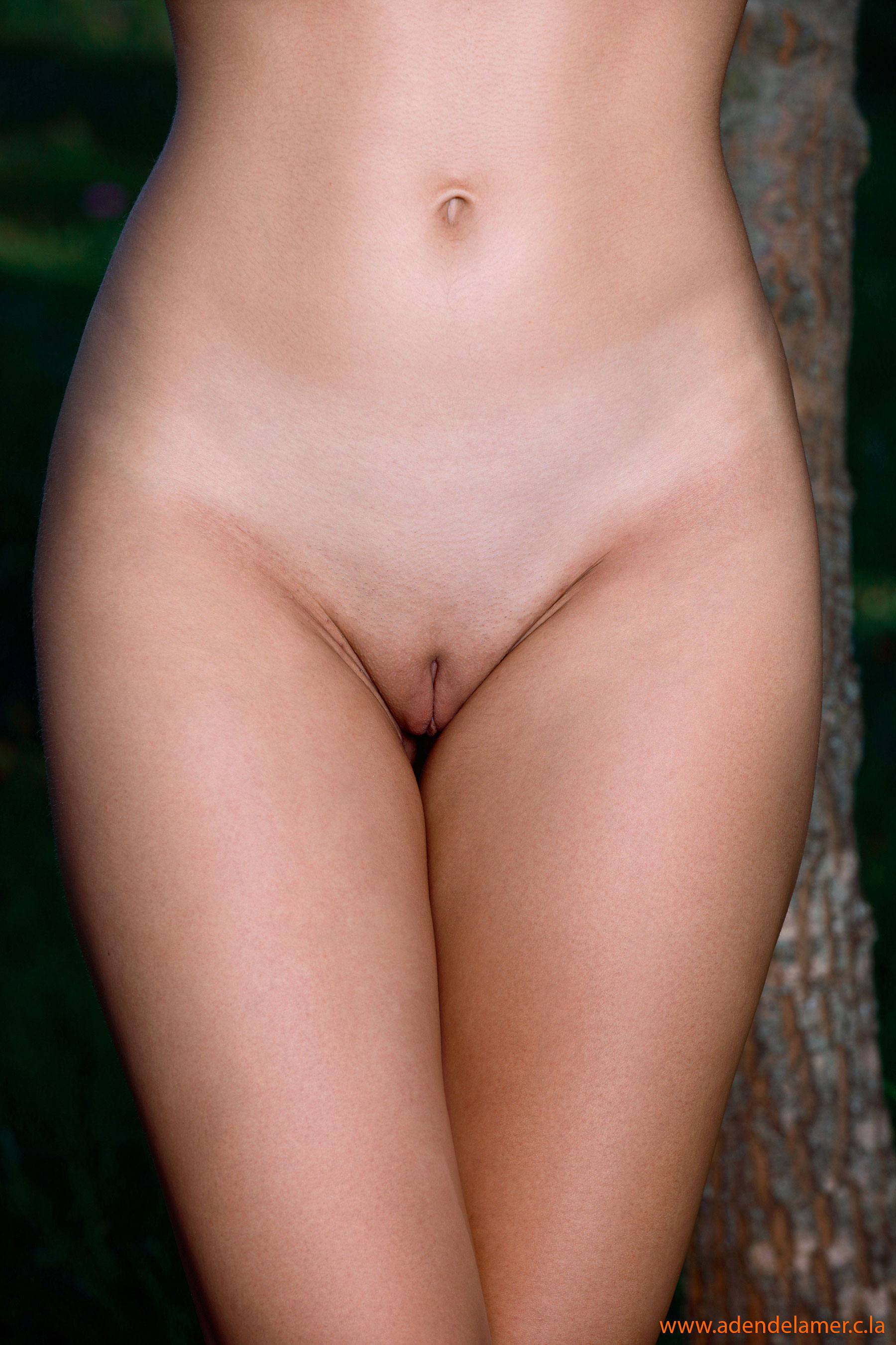 http://laurent.jamair.free.fr/Vrac2020/860/images/056.jpg